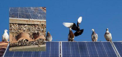 Come lavare i pannelli fotovoltaici